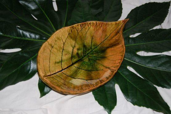 ceramiczny liść magnolii