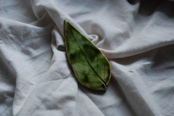 ceramiczny liść trzmieliny pospolitej