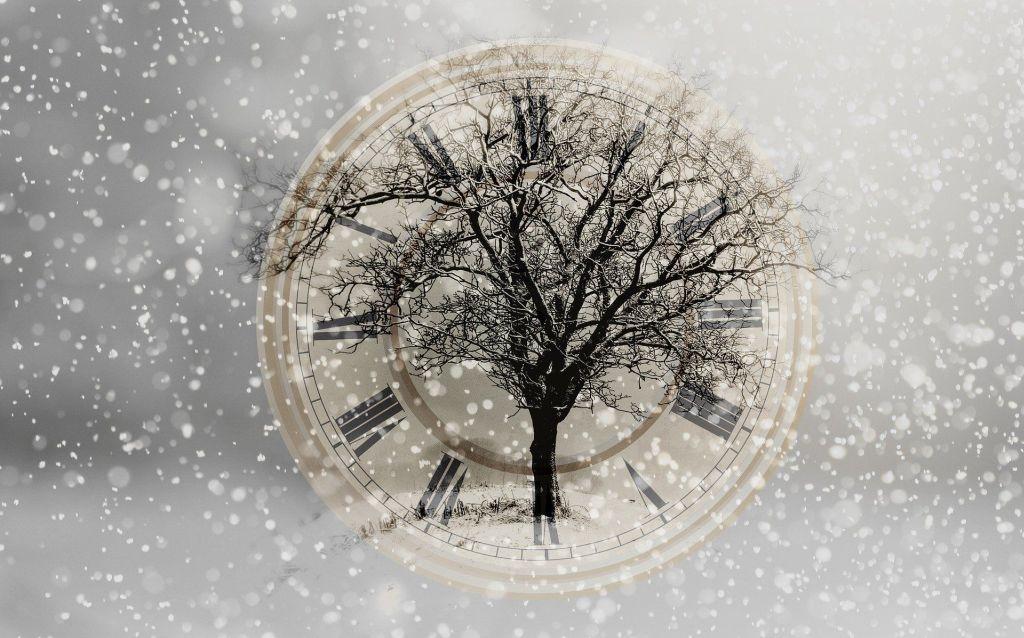 drzewo na tarczy zegara