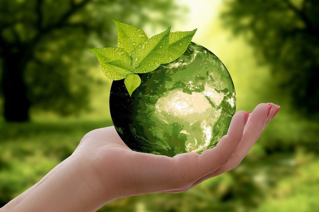 zielona ziemia w duchu zero waste